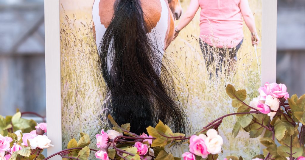 Horse Hair Keepsake Memorial | Tails to Treasure