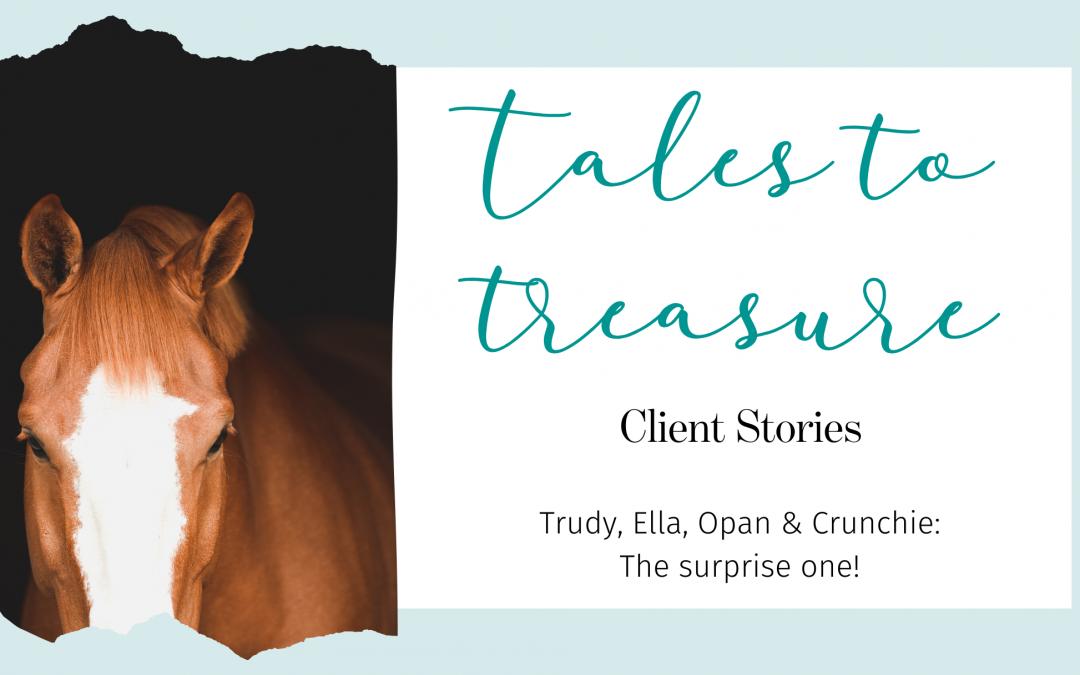 Trudy, Ella, Opan & Crunchie