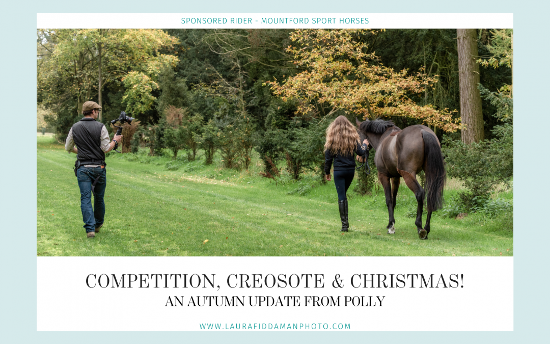 Competition, creosote & Christmas